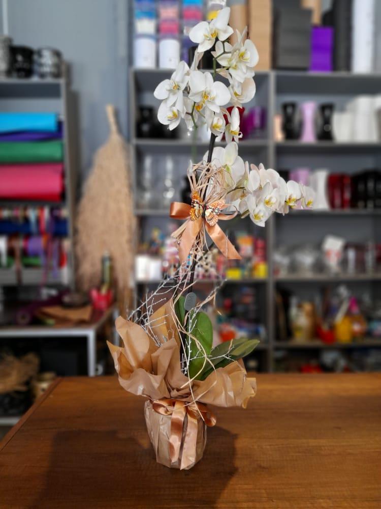 1 Saatte Teslim Orkide - 17