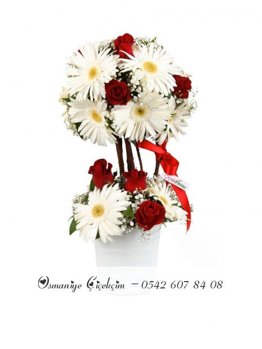Kırmızı Beyaz Çiçek Topu