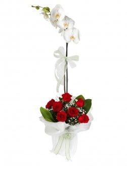 Tekli Beyaz Orkide Ve Güller