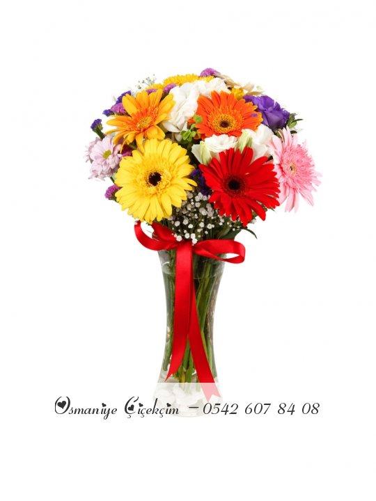 Vazoda Kir Çiçekleri
